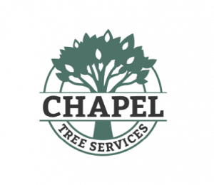 Chapel Tree Services Logo