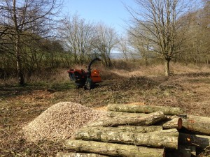 Tree services for commercial customers using machine