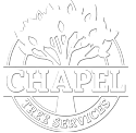 Chapel Tree Logo