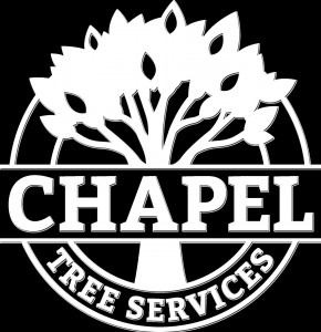 Chapel Tree Services Black and White Logo 1