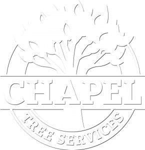 Chapel Tree Services White Logo Large