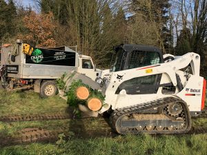 Landrover and skidsteer
